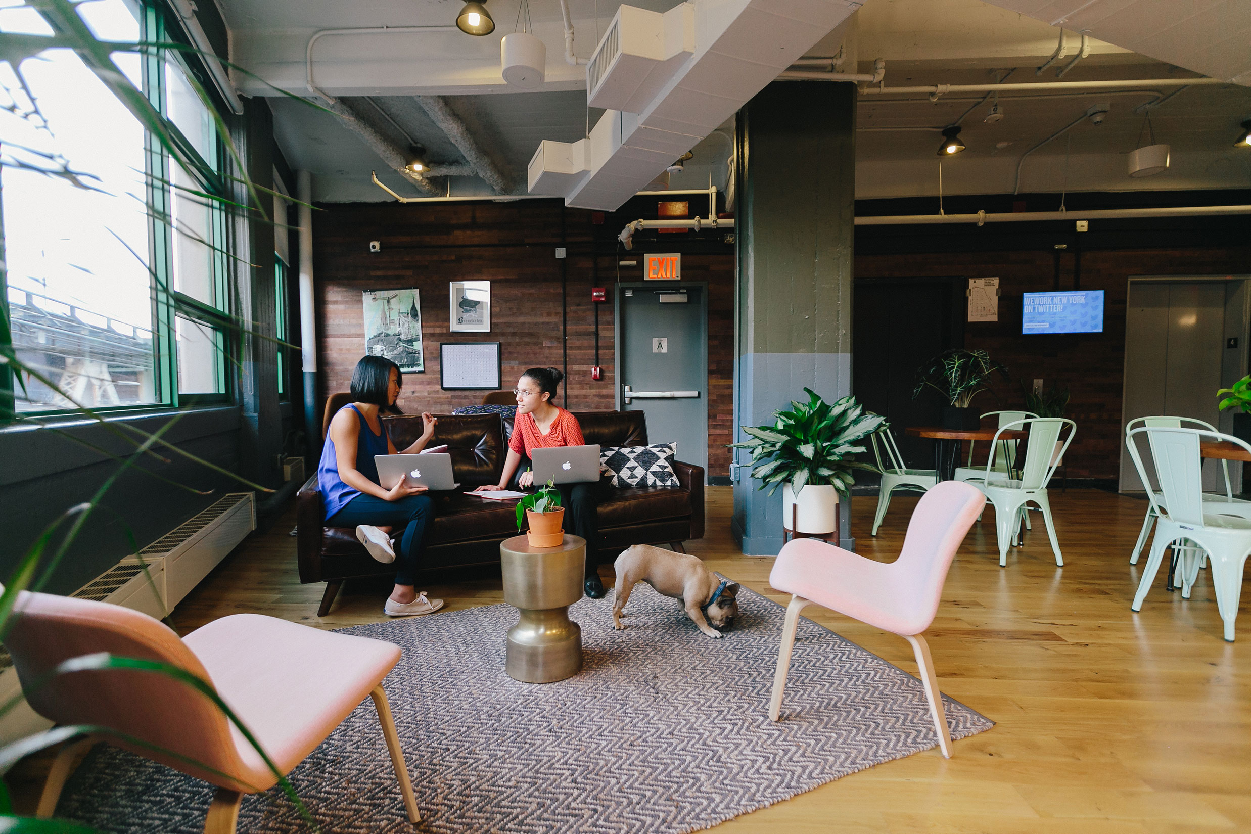 Coworking Office Space In New York City Wework Dumbo Heights